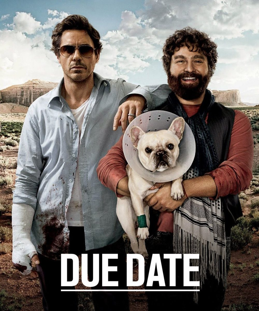 "Poster for the movie ""Due Date"""