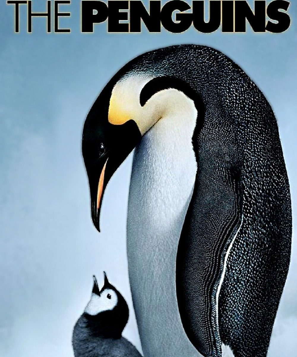 "Poster for the movie ""March of the Penguins"""